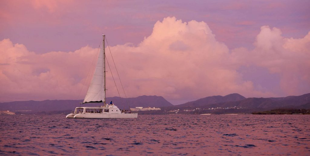 Gallery Cruising Catamaran-1