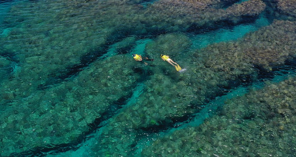 206-snorkeling